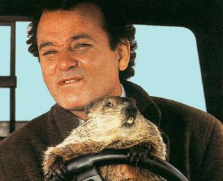 bill.murray.groundhog.day_.story